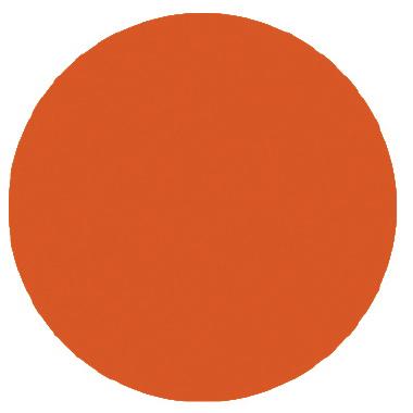 Bonfire Orange - Palmer Prism Acrylic Paint