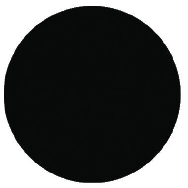Raven Black - Palmer Prism Acrylic Paint