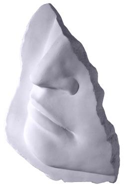 Davids Fragment Plaster Plaque