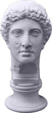 Apollo Bust Plaster Statue