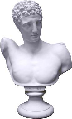 Hermes Bust Medium Plaster Statue