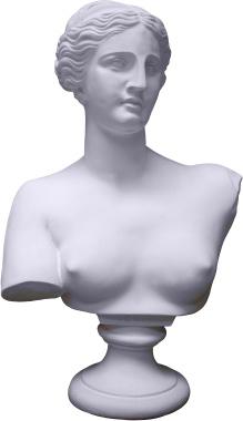 Venus Bust Plaster Statue