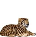 Tiger Cub Lying Down  Statue