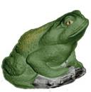 Bull Frog  Statue