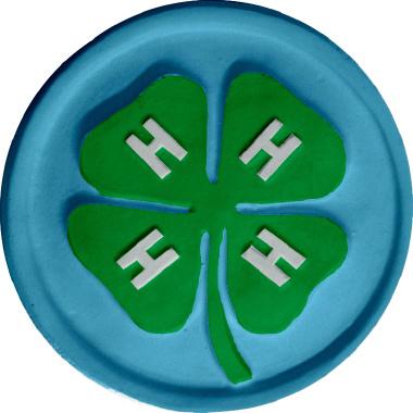 Four H Plaque